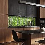 wandmotiv24 Küchenrückwand Birkenwald 180 x 60cm (B x H) - Hartschaum 3mm Nischenrückwand, Spritzschutz, Fliesenspiegel-Ersatz, Deko Küche M0363