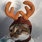 Nigoz - Gorro de Navidad para mascota, perro, cachorro, gato, festival, reno, alce, cuernos, regalo de Navidad, accesorios de disfraz portátil y útil de alta calidad