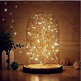 LEDMOMO Luces de bóveda de vidrio, campanilla de techo LED Lámpara de mesa de luz nocturna...