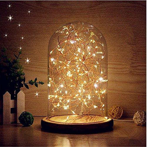LEDMOMO LED USB lampada barattolo con Illuminazione ocn Campana di Vetro Luce stringa in bottiglia per la decorazione di comodino/natale/festa/casa/camera da letto (luce calda)