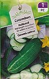 Photo de AGROBITS 60 cir Semi (2,8 g) di Criolo, confezione Originale