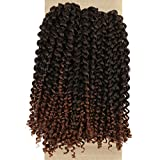 Lady Miranda Brown Color Color Afro kinky Curly Braiding Hair Extensions Jerry Curl Crochet Hair 3X Braid Hair Mixed Dark Brown to Light Brown Short Synthetic Hair Styles (Black&brown)