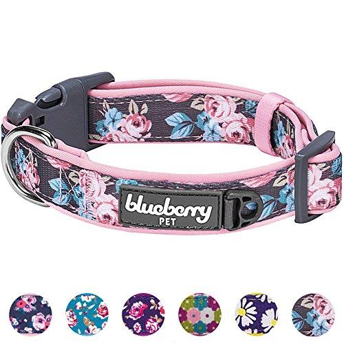 Blueberry Pet 1,5cm S Klein Frühlingsgru? Rosig Bedruckt Niedliches Neopren-Gepolstertes Hundehalsband - 7