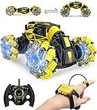 DoDoeleph 1/16 ferngesteuertes Auto, RC Auto Offroad, RC Monstertruck mit Fernbedienung, Auto...