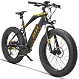 MZZK Electric Bike 7-Speed Powerful E-Bike with 48V Lithium Battery & Multi-Function Display (26' Mountain Bike-Black)