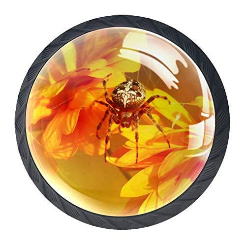 Spinnen-Chrysantheme Sun Golden 4 Stück Kristallglas Möbelgriff Griffe Kleiderschrank Möbelknöpfe Schrank Schublade Knöpfe Türgriffe mit Schraube Beste Festival Geschenk für Kinder 3.5×2.8cm