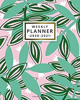 2020-2021 Weekly Planner: Pretty Green Leaves Two Year Weekly Agenda, Diary & Planner - 2 Year Organizer with To-Do's, Holidays, Inspirational Quotes, Vision Board & Notes - Abstract Cactus Pattern