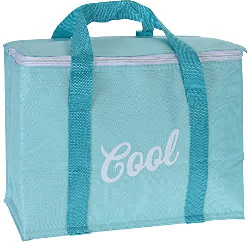 hibuy Cool Koeltas, 20 liter, met XXL koelelement, opvouwbaar, geïsoleerde picknicktas, 32 x 32 x 20 cm