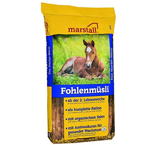 marstall Premium-Pferdefutter Fohlenmüsli, 1er Pack (1 x 20 kilograms)