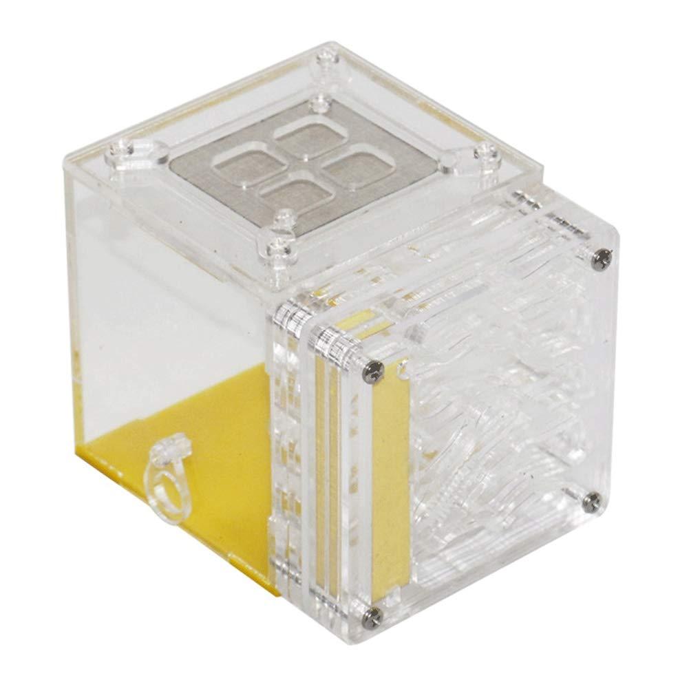 WCX Nido De Hormigas Nidos De Insectos Granjas Que Alimentan La Humedad Acrílico El Plastico Monitor Cuadrado Caja Fácil A Instalar para EN Vivo Hormigas: Amazon.es: Hogar