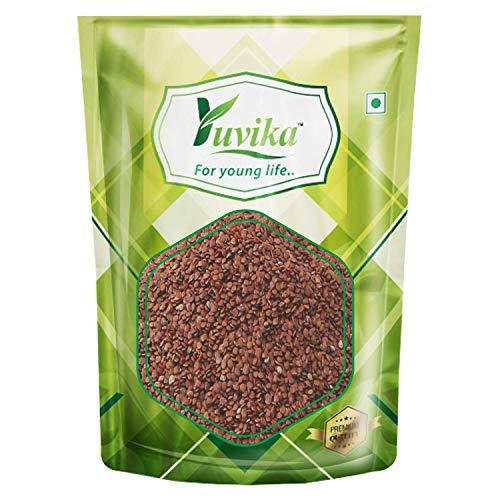 YUVIKA Lajwanti - Mimosa Pudica - SensitivePlant Seeds (100 GM)