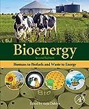 Bioenergy: Biomass to Biofuels and Waste to Energy