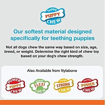 Nylabone Jouet clés premières dents pour chiot, Extra Small