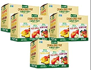Sensible Foods Crunch Dried Fruit, 20 Count (5 Boxes)