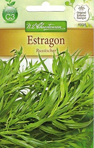 Chrestensen Estragon 'Russischer'