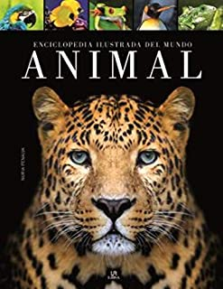 Best mundo de animais Reviews