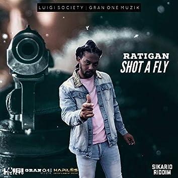 Shot a Fly