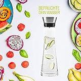 BeBuy24 2X Wasserkaraffe Glas (1 Liter) - Glaskaraffe mit Deckel und Ausgießer Wasserflasche - 6