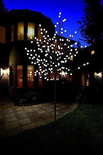 Bonetti Premium LED-Baum/warm-weiß beleuchtet/Verschiedene Größen/Lichterbaum für den Innen- und Außenbereich (150 cm mit 200 LED)