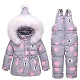 Baby Girls Snowsuit Toddler Puffer Hooded Jacket + Bib Pants 2 Pieces Set Grey 80,Small