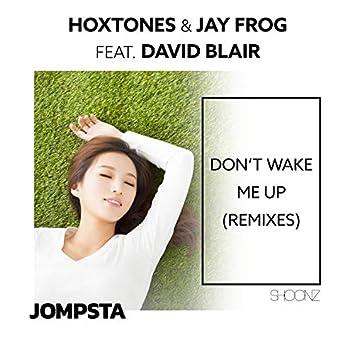 Don't Wake Me Up (Remixes)