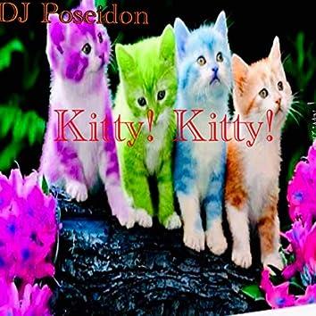 Kitty! Kitty!