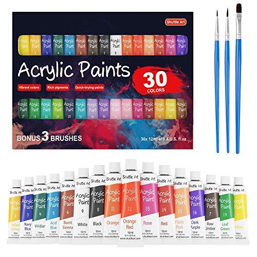 Acrylique Peinture Set, Navette Art 30 x 12 ml Tubes Artiste Qualité Non Toxique Riche Pigments couleurs Grand Pour Enfants Adultes Peinture Professionnelle sur Toile Bois Argile Tissu En Céramique Ar