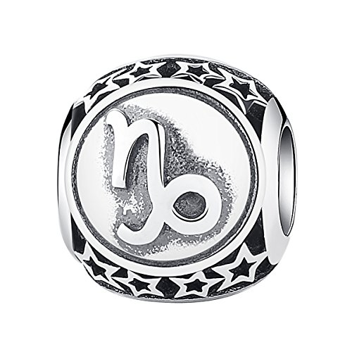 MiniJewelry fit Pandora Charms Bracelets Capricorn Zodiac Sign Charm for Bracelets Sterling Silver Zodiac Sign Horoscope Constellation Beads for Women Girls, Capricorn Bead