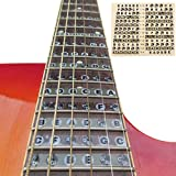 Acamifashion Guitar Fretboard Note Decals Fingerboard Frets Map Sticker for Beginner Learner