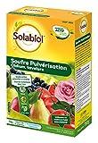 SOLABIOL SOPUL750 Souffre Pulvérisation 750g Jusqu' a 100L de Solution, Double Action: préventive et curative