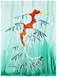 Best leafy sea dragon artwork Reviews
