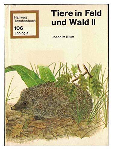 Tiere in Feld und Wald II. Die Insektenfresser, Fledermäuse und Landraubtiere.