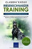Riesenschnauzer Training: Hundetraining für Deinen Riesenschnauzer