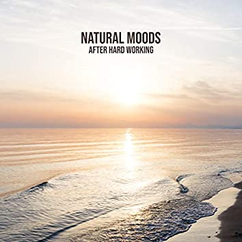 Natural Moods After Hard Working: Meditation with Nature, Sounds Reducing Stress & Anxiety, Healing Frequencies