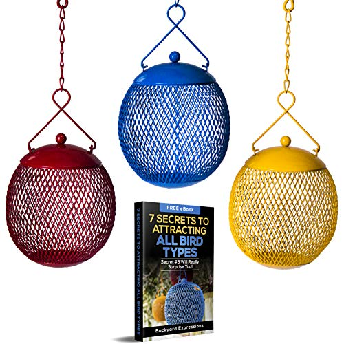 Backyard Expressions - Set of 3 Bird Feeders for Outdoors Squirrel Proof - Bonus Ebook Included...