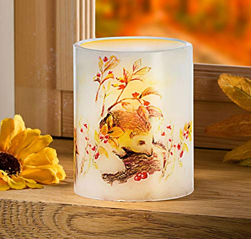 LED Echtwachskerze mit Igel Herbst Dekokerze Kerze Tischdeko Fensterdeko 10 cm