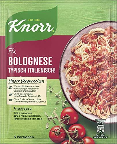 Knorr Fix Bolognese Typisch italienisch Beutel, 42ml