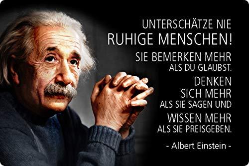 Blechschild 20x30cm gewölbt Unterschätze nie ruhige Menschen Zitat Einstein Deko Geschenk Schild