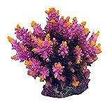Decoración coral de resina para acuario, modelo Acropora, 5 cm x 6 cm x 7 cm