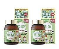 葉酸+鉄+DHA 90粒入・お徳用(約3ヶ月分)・2個セット< 葉酸30粒のプレゼント付き! >