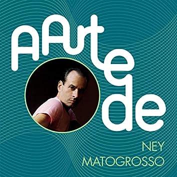 A Arte De Ney Matogrosso
