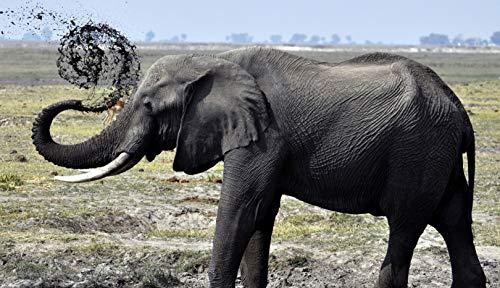 No Animal Elefante Rompecabezas De 1000 Piezas para Adultos Montaje De Madera Decoración para El Juego De Juguetes para El Hogar Juguete Educativo para Niños Y Adultos