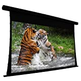 EluneVision EV-T3-106-1.0 Projection Screen Motorized 110 V