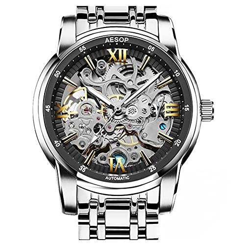 GUANQIN Aesop Esqueleto Tourbillon Automático Mecánico Hombres Reloj de Pulsera Negocios Acero Inoxidable Cristal Zafiro Impermeable Reloj Cronógrafo Luminoso, Plata y negro., M, 40mm,