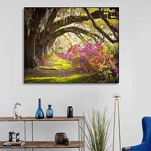 Poster en afdrukken Wall Art Canvas schilderij Wanddecoratie Kleurrijke tuin Foto's van woonkamer Moderne huisdecoratie 80x64cm Geen