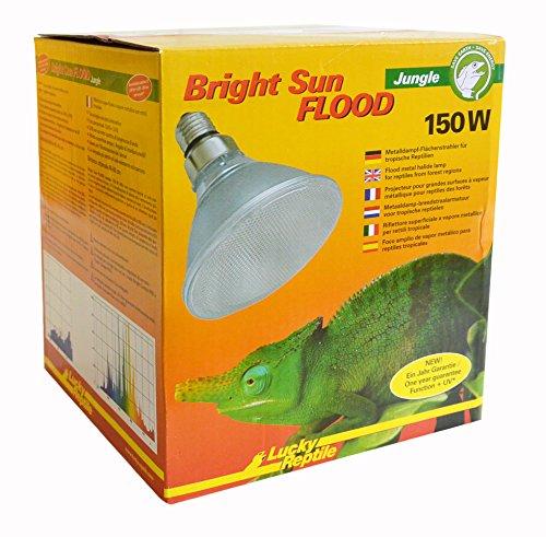 Lucky Reptile Bright Sun UV Jungle Lampe à Vapeur métallique Culot E27 Rayons UVA et UVB