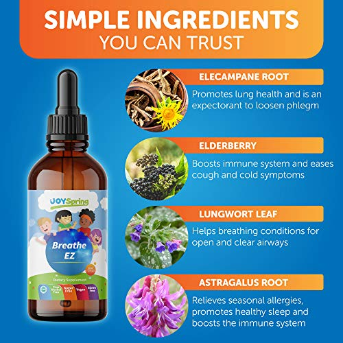 Breathe EZ - Best Allergy Relief for Kids - Liquid Childrens Allergy Medicine - Kids Allergy Medicine Drops - Family Sniffle Support That Works Faster Than a Chewable