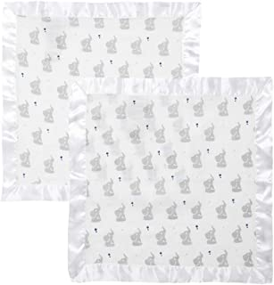Aden by Aden + Anais Security Blanket 2 Pack, Baby Star