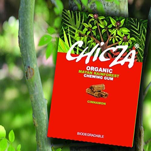 Chicza Chicza The Organic Mayan Rainforest Chewing Gum - 1 c