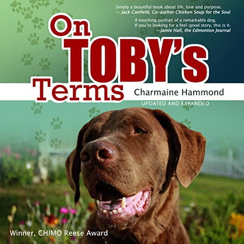On Toby's Terms audiobook cover art
